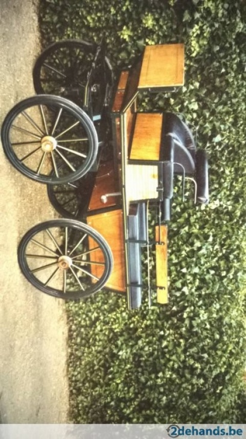 Recreatiewagen Exceptional carriage for a single or a pair horses